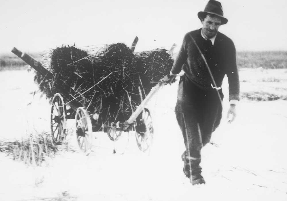Fauche des marais au 20e siècle